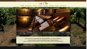 site internet screenshot castel lapeze